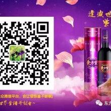 东方紫酒,悠悠紫酒情图片