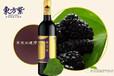 東方紫酒:桑樹的一身都是寶!