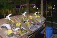 安徽餐饮装饰船海鲜船景观船定做厂家直销