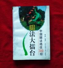 中国腿法绝技300招武术书籍大全