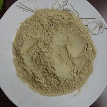 香菇粉广东东莞蔬菜粉厂家直销琦轩食品图片