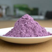 紫薯粉蔬菜粉广东东莞琦轩食品厂家直销图片