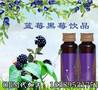 江苏正规生产黑莓复合饮品OEM代加工厂家图片