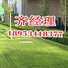 厂家供应植草格,排水板