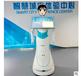 商务服务机器人