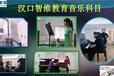 汉口智维成人少儿音乐唱歌钢琴,古筝,二胡,吉它等乐器兴趣班寒假培训