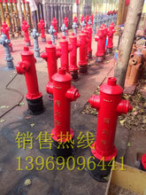 最低价销售黑龙江快开调压稳压防撞防冻自泄式室外地上消火栓SSFT150/80-1.63C认证型号图片