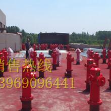 吉林厂家最低价供应快开调压稳压防撞防冻自泄室外地上消火栓SSFT100/65-1.63C认证型号