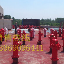 吉林厂家最低价供应快开调压稳压防撞防冻自泄室外地上消火栓SSFT100/65-1.63C认证型号图片