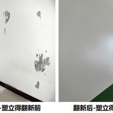 醫院病房墻面用塑立得翻新的效果!塑立得自潔涂料!圖片