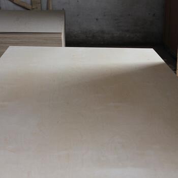 大量供应8厘板头板边胶合板8厘定尺板质优价廉