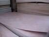 碎心板膠合板楊木板墊板異形板托盤用板板材廠家直銷