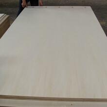 多層板,包裝板,五合板膠合板,不同尺寸可切割定做圖片