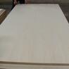 漂白胶合板
