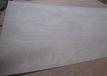 供應半整芯膠合板15厘多層膠合板異形板包裝板