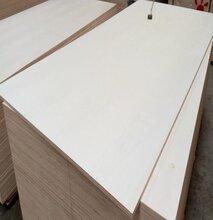 18mm多层板强度高包装箱板材胶合板图片
