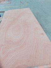 12mm桃花芯面多层板家具板胶合板双面砂光△可贴面ζ 图片