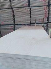 多层板家具板果然门芯板胶合板抗弯曲不变←形图片