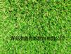 塑胶门球场、门球场施工、人造草坪施工