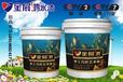 广东水漆厂家中国水漆十大品牌金展鸿水漆招商