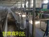 魚骨式擠奶機國家補貼質量保障甘肅賓利達直銷