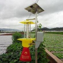 河南太阳能杀虫灯厂家,太阳能频振式杀虫灯