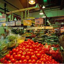 重庆蔬菜鲜肉冷库设计安装
