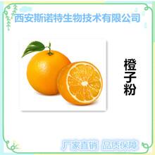 橙子粉橙子果粉厂家直销斯诺特生物