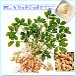 大量现货供应木犀草素(Luteolin)95%纯天然花生壳提取物