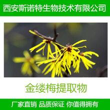 金缕梅提取物金缕梅粉单宁酸10%-20%多规格供应