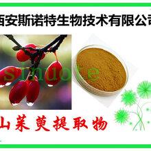 山茱萸提取物山茱萸粉从速发货供应中
