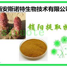 锁阳提取物10:1含锁阳生物碱从速发货