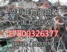 """濮阳电缆回收市场""""更高""""价格"""