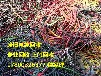衡阳电缆回收衡阳二手/废旧电缆回收价格-市场价格差别