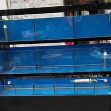 海口餐饮海鲜池定做海鲜池设计海南海鲜池订做图片
