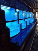 廣州定做超白熱彎海鮮池酒家超大海鮮池定做公司圖片