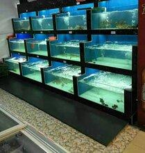 中山市起灣定做海鮮池公司沙崗墟哪里有海鮮魚缸定做圖片