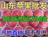 山东省临沂市纸袋红将军苹果供应价格
