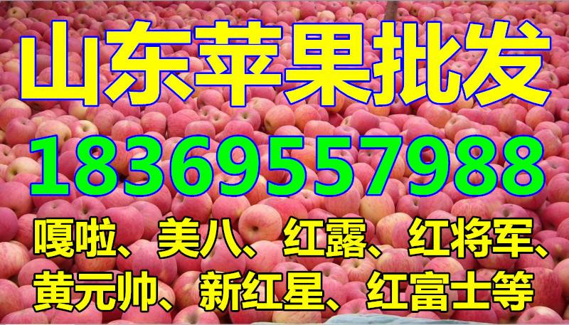 四川苹果格表