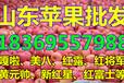 山东省枣庄市红星苹果价格行情