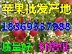 浙江湖州纸夹膜红富士苹果产地报价