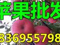湖南益阳纸夹膜红富士苹果价格图片