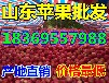 广西玉林红露苹果价格网