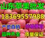 四川雅安美国八号苹果行情