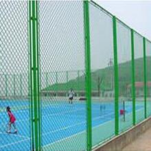 帝顺热销PE材质绳网聚乙烯网球场专用网尼龙绳网养殖尼龙网
