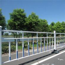 安平帝顺热销铁艺护栏铁艺护栏生产厂家锌钢护栏