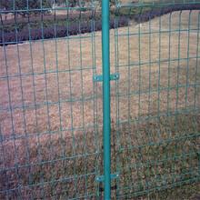 帝顺热销围网之一小区围栏三角折弯护栏