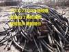 """郑州(电线电缆回收)当地电缆回收公司""""今日""""上报价格"""