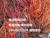 天长电缆回收(够专业.高价格)滁州废旧电缆回收