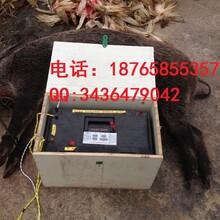 广安捕猎机厂家咨询图片